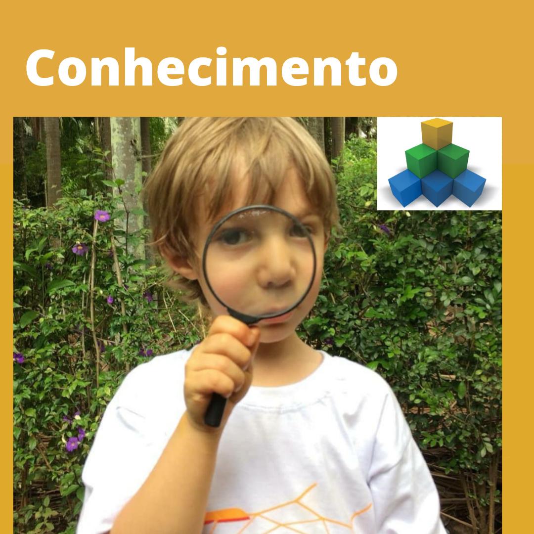 Competência 1 Conhecimento na BNCC